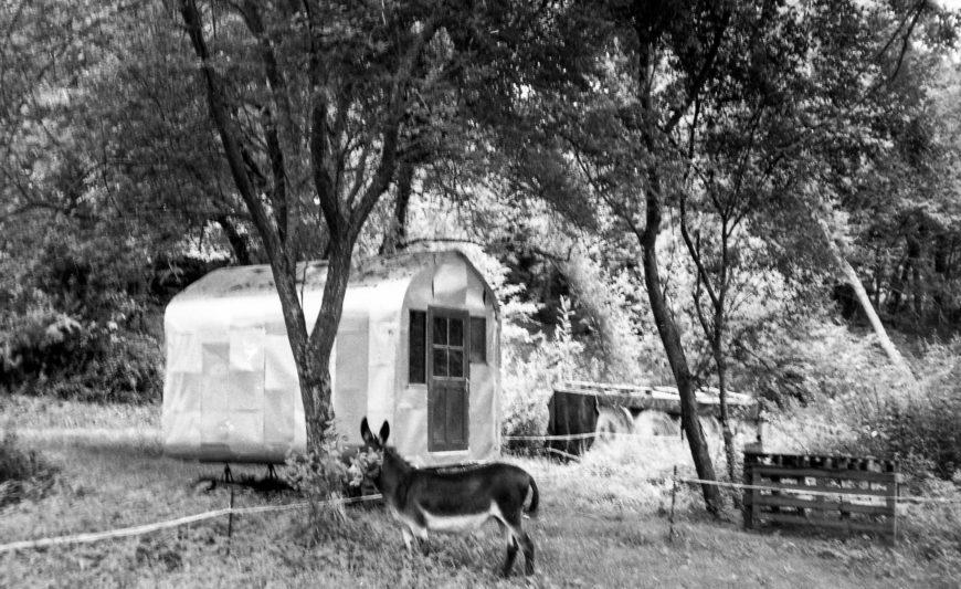 Camping bourrique.