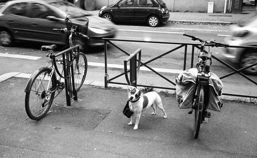 Vélo à quatre pattes.